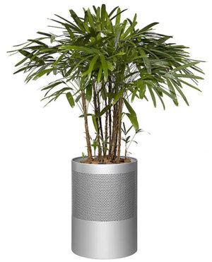 Hi-Tech Planter with Round Perfaration